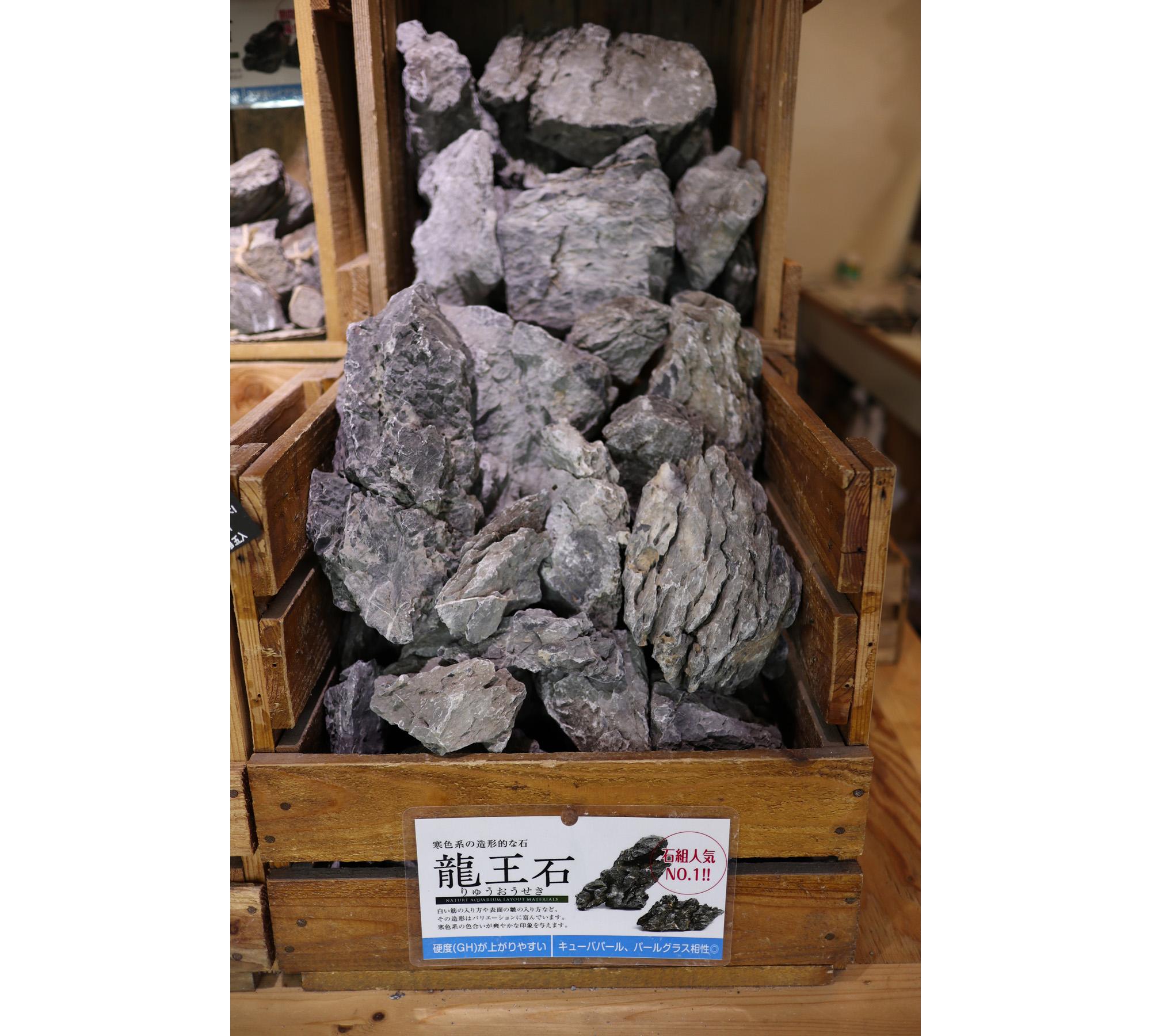 ADA龍王石20kg 入荷。