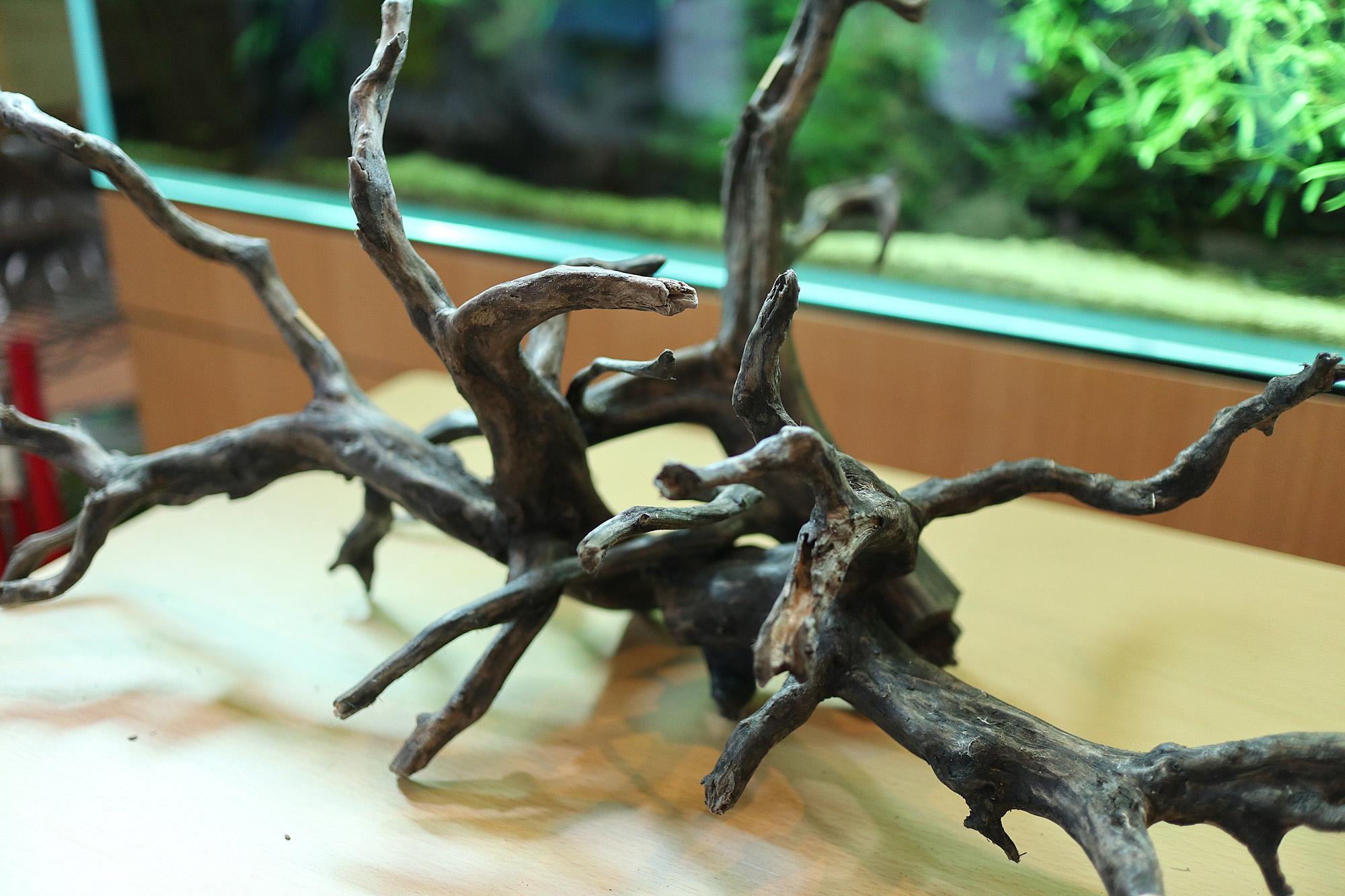 良形!黒枝流木Mサイズ入荷