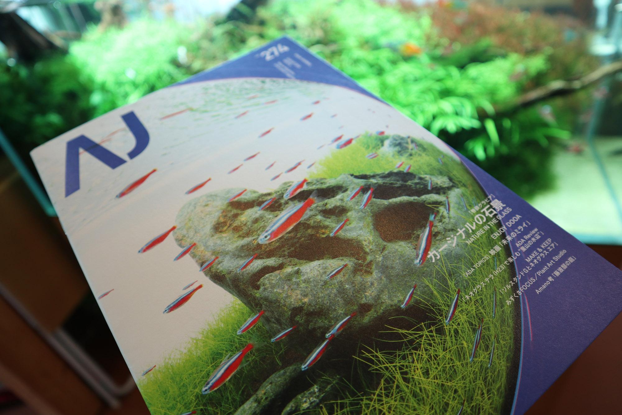 アクアジャーナル最新号入荷。特集は石組レイアウト。