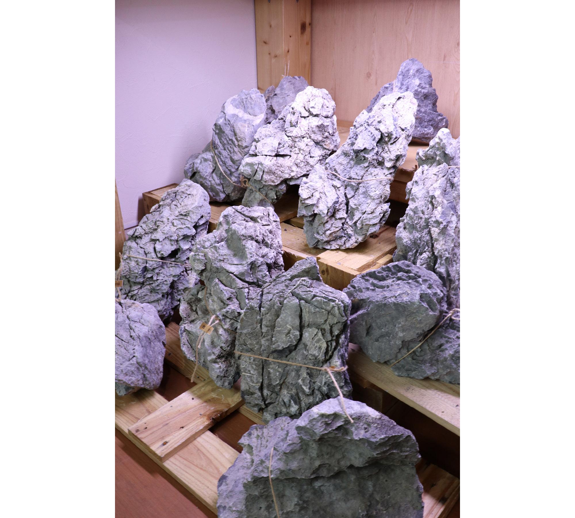ADA龍王石 特寸サイズ 追加入荷
